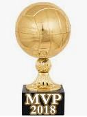 MVP Волейбол 2018